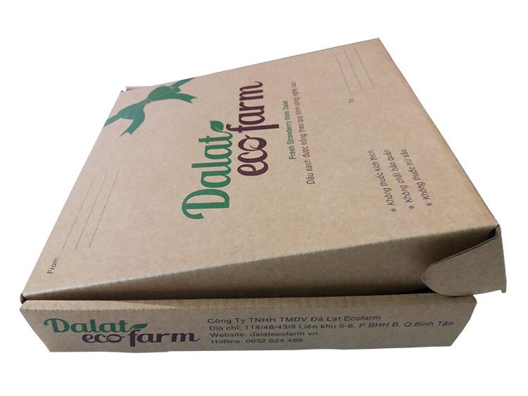 Hộp carton đựng dâu tây sạch Đà Lạt