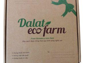 sản xuất Hộp carton đựng dâu tây sạch Đà Lạt