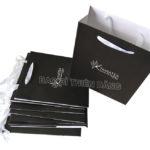 Túi giấy in offset chất lượng cao - hinh 6