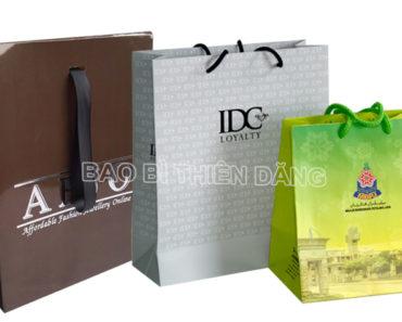 Túi giấy in offset chất lượng cao - hinh 3