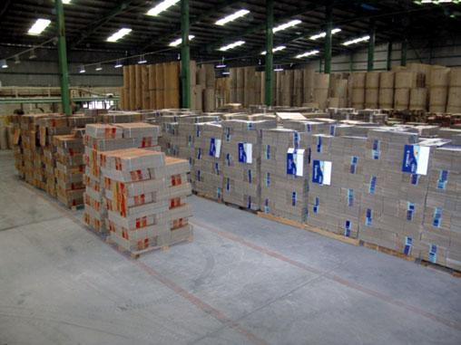 Giá giấy tăng vọt do khan hiếm nguồn bột giấy - hinh1