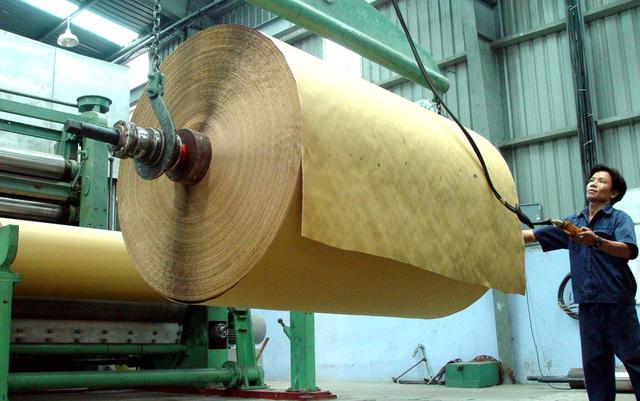 Giá giấy tăng vọt do khan hiếm nguồn bột giấy - hinh2
