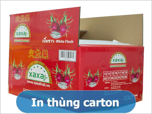 in thùng carton - con